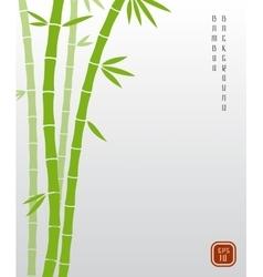 Chinese bamboo or japanese bambu asian vector