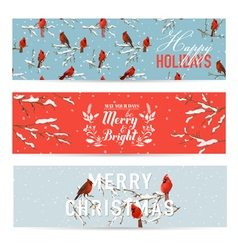 Christmas Banners Labels Tags - Winter Birds vector image