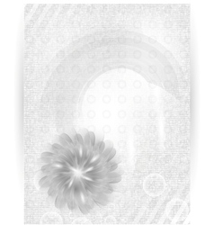 chrysanthemum blue flower card vector image