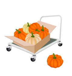 Hand truck loading pumpkins in shipping box vector
