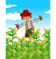 Scarecrow standing in corn field vector