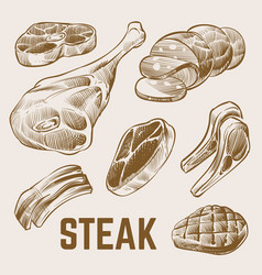 sketch meat hand drawn steak set vector image