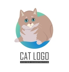 European shorthair cat flat vector