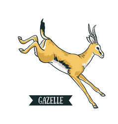 Antelope image digital painting full color cartoon vector
