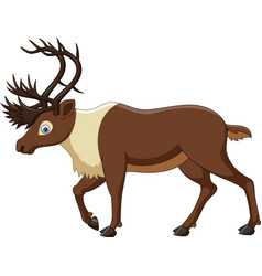 cartoon reindeer isolated on white background vector image
