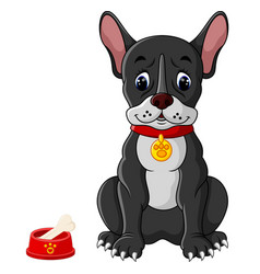 french bulldog sitting vector image