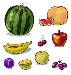 Fruit set of colored sketch brushstrokes vector