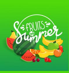 Fruits summer concept vector