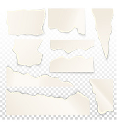 set isolated white ripped paper vector image