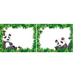 set panda frame vector image
