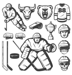 Vintage Hockey Elements Set vector image