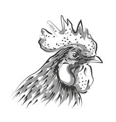 line sketch rooster head vector image vector image