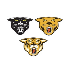 Panther Big Cat Growl Head Isolated vector image vector image
