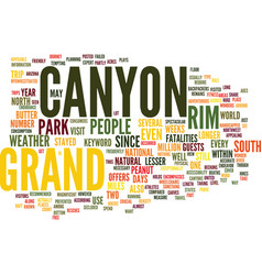 grand canyon text background word cloud concept vector image