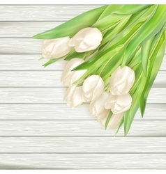 Bouquet of white tulips EPS 10 vector image