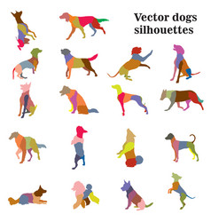 Dogs breeds silhouettes vector