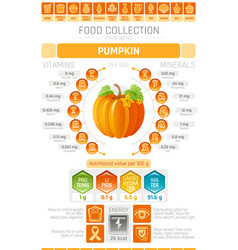 Food infographics poster pumpkin vegetable vector