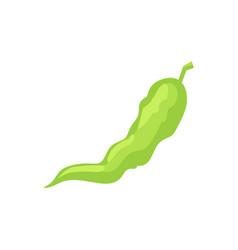 Green chili pepper pod icon cartoon style vector