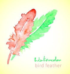 Hand drawn beautiful stylish ethnic feathers vector image