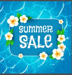 summer sale background warm sea and plumeria vector image