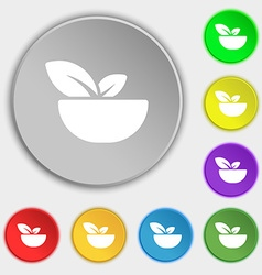 Organic food icon sign Symbol on eight flat vector image vector image
