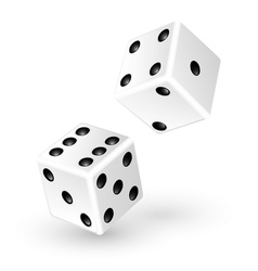 Two white dice vector image