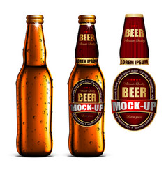 Beer-mock-up-set golden bottle without a label vector
