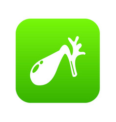 Gallbladder icon green vector