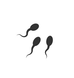 icon sperm cell on white background vector image