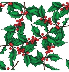 seamless hand drawn Holly pattern vector image
