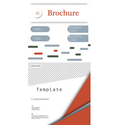 set of business brochure flyer design layout vector image