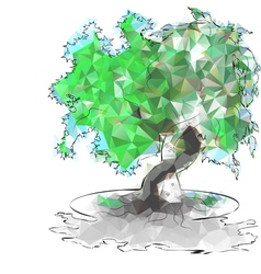 triangular trees vector image