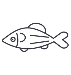 fish salmon line icon sign vector image