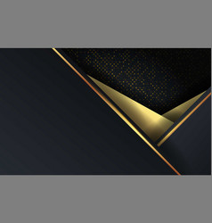 Abstract luxury mesh background with hexagon vector