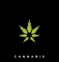 cannabis template vector image
