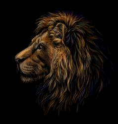 Lion color profile portrait a lions head vector