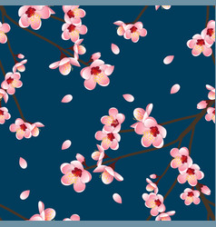 prunus persica - peach flower blossom on indigo vector image