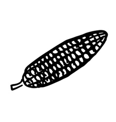 corn doodle vector image vector image