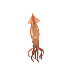 detailed flat icon of swimming squid water vector image