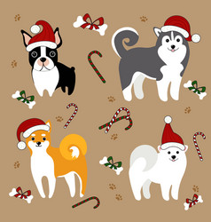 dogs in santa hats christmas card vector image