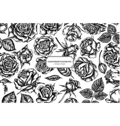 floral design with black and white roses vector image