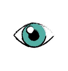 human eye icon vector image