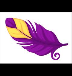 Plumage exotic or rare bird avian feather vector