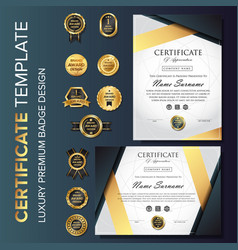 professional luxury certificate template vector image
