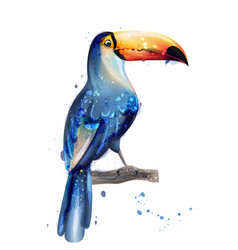 toucan watercolor summer card with parrots vector image