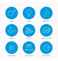 Fertilization pregnancy and pediatrics icons vector image vector image