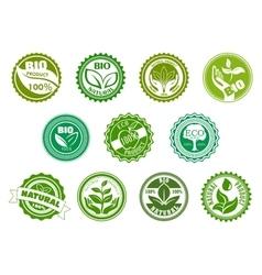 Bio eco organic and natural green labels vector image vector image