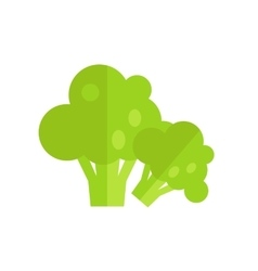 Broccoli in Flat Style Design vector image
