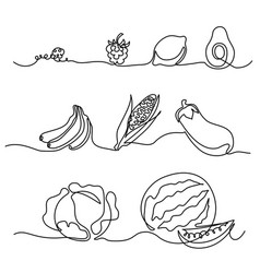 Continuous one line drawing vegetables differebt s vector