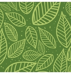 Leaves background Nature design graphic vector image